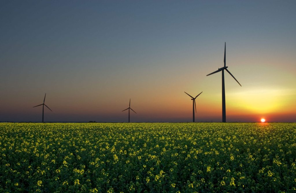 Green Energy Options for Phoenix Homeowners
